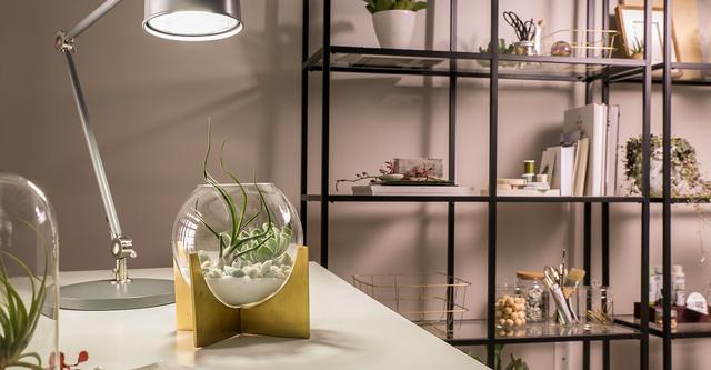 Bureau avec des plantes et la lumière illumine