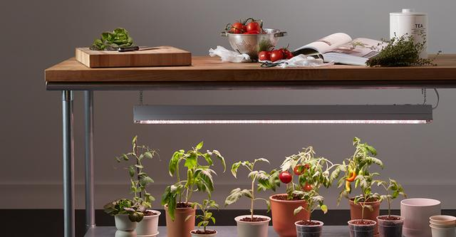 GE Grow Lights Garden to Table