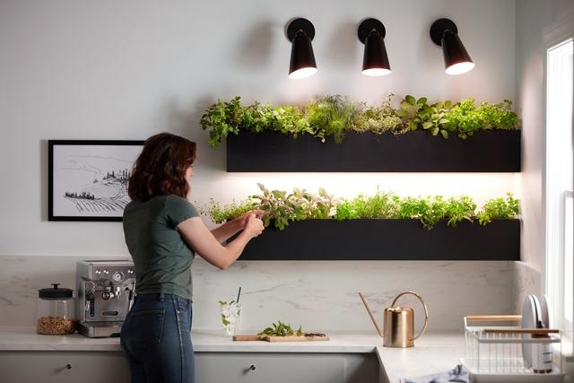 GE Grow Lights Kitchen Herbs