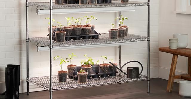 GE Grow Lights Fruit and Flower