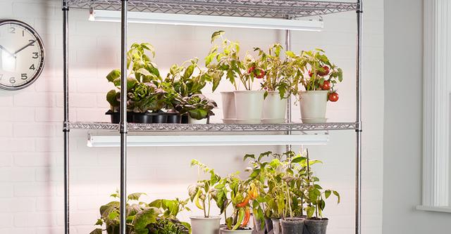 GE Grow Lights Seeds and Greens