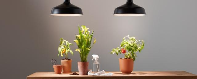 GE Grow Lights